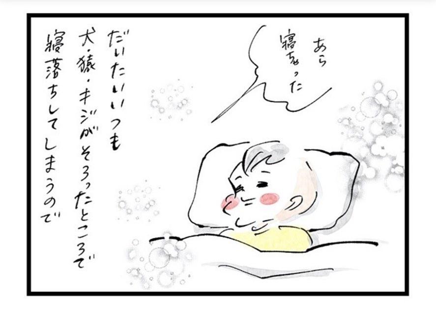 sayakayokomine_72275813_726323167777513_827689580179348755_n