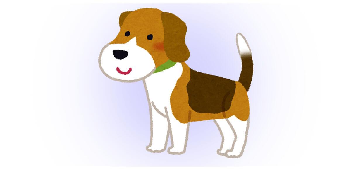 行動 タイミング きっかけ 動物 心理テスト 犬
