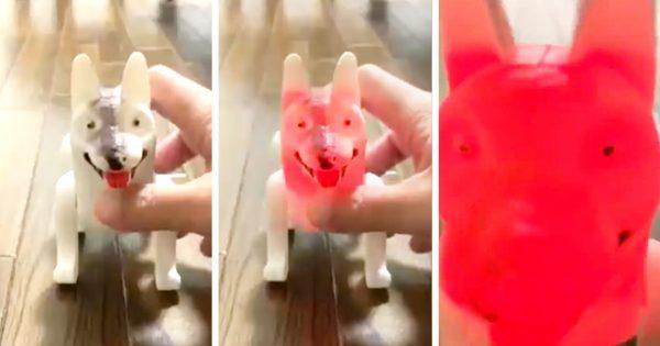 「インドみやげの犬」がマジで意味わかんなくて最高だから見てくれ…