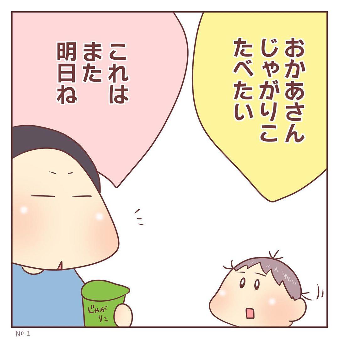 mochiho_mochiko_82330093_164453208190600_4146568737167843218_n