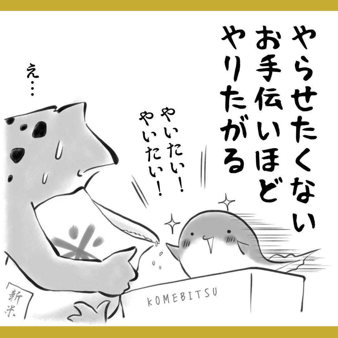 yuko_toritori_83340961_490094738581501_6015428817716670780_n