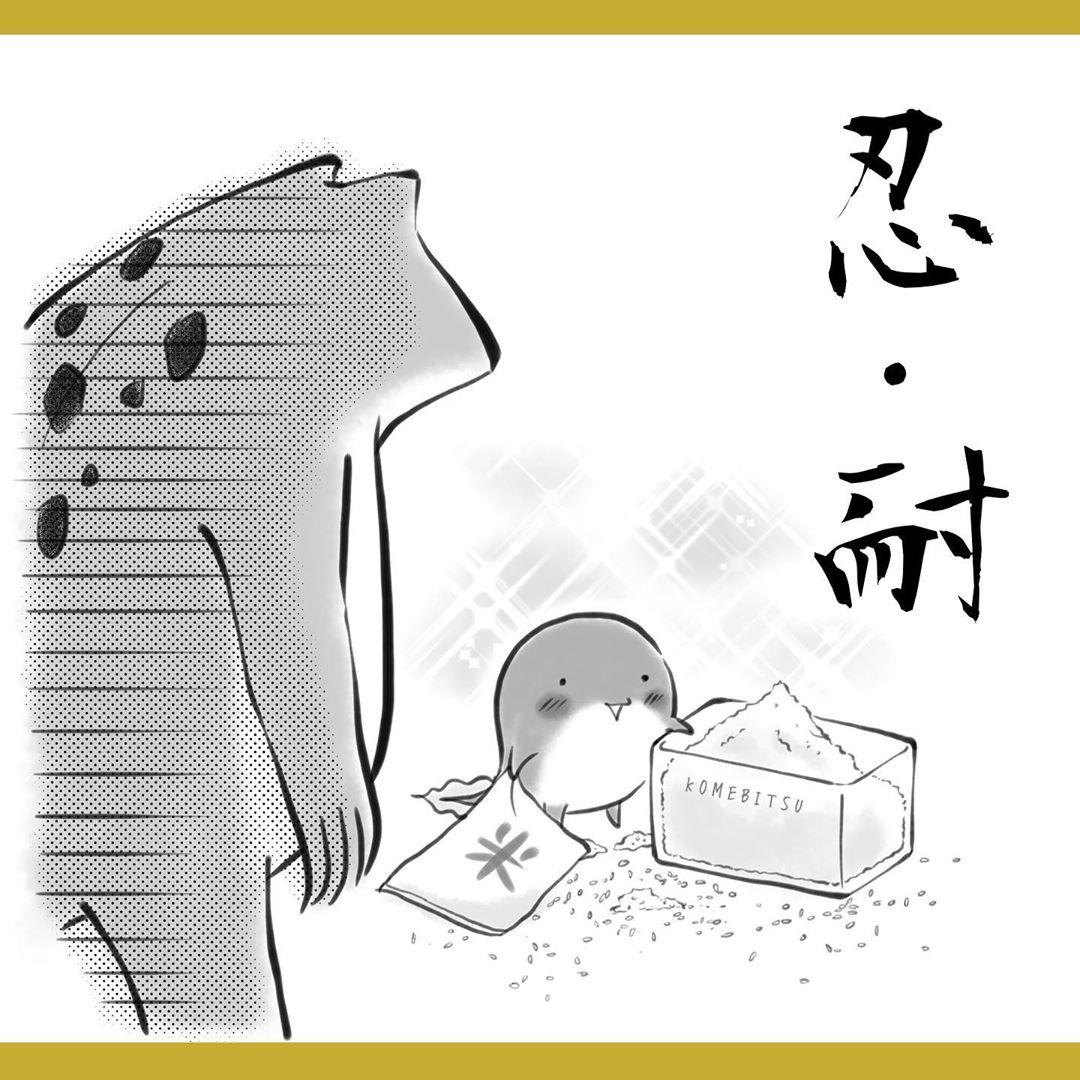yuko_toritori_84524994_119384632825312_8808365224747751157_n