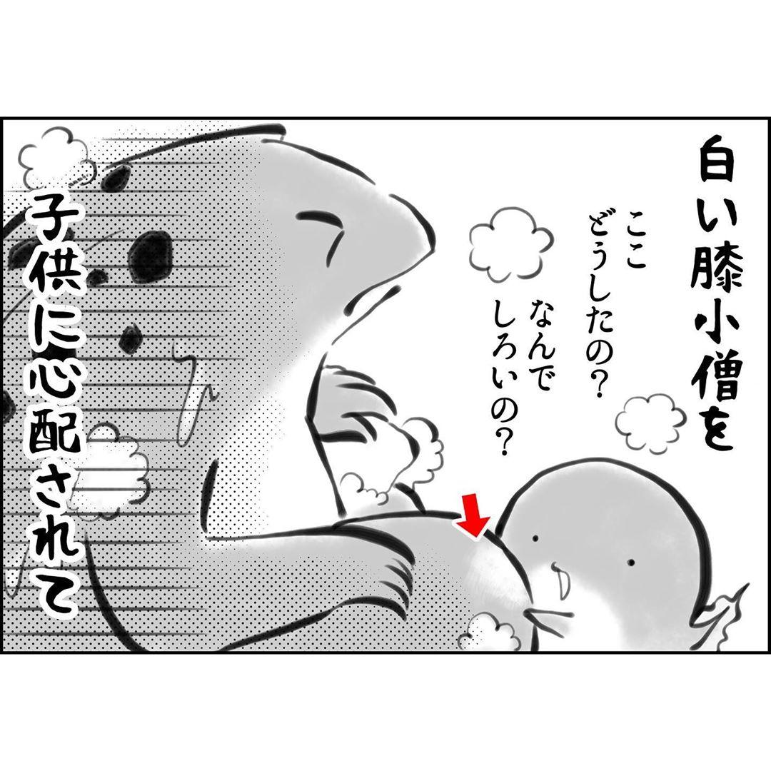 yuko_toritori_75487936_253100015655517_8936859393042459927_n
