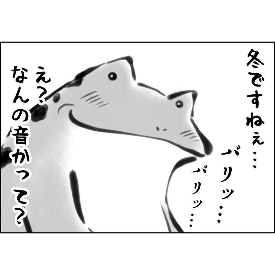 yuko_toritori_75158659_444160533198984_2817114015364522878_n