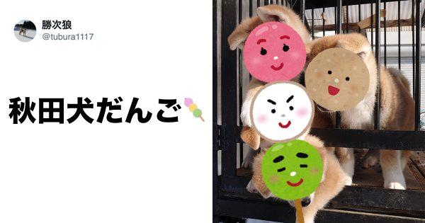 akitadango