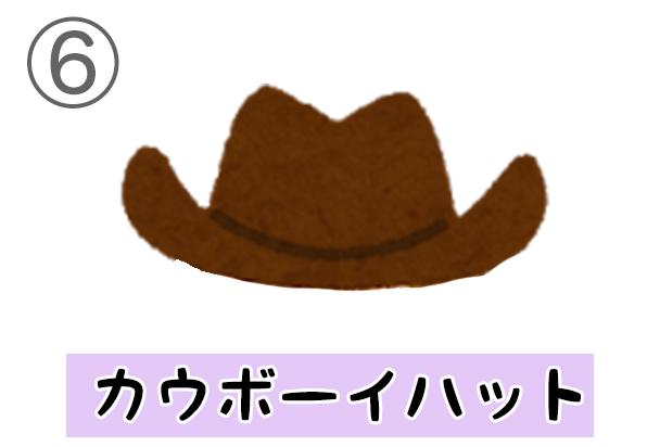 6cowboyhat