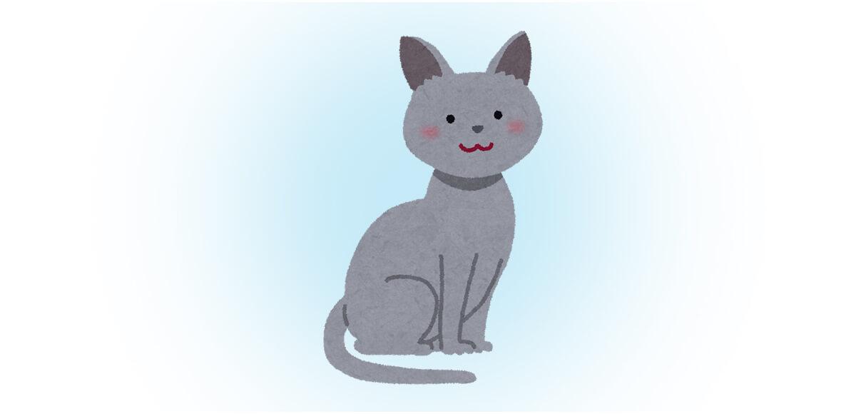 ネコ 猫 猫の日 性格 心理テスト ロシアンブルー