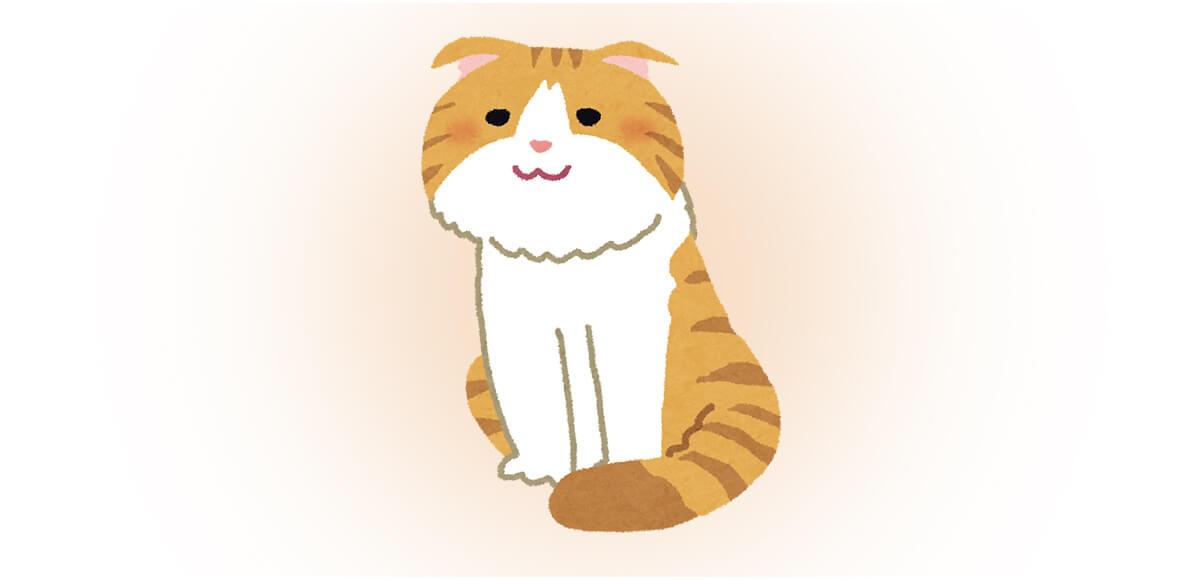 ネコ 猫 猫の日 性格 心理テスト スコティッシュフォールド