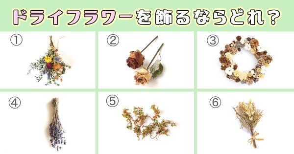 dryflowers