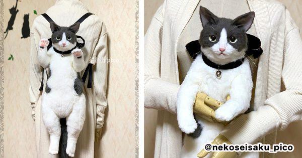 猫ちゃんが背負われてる…と思ったら「ガチのリュック」だった😲