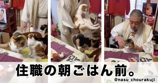 @nasu_chourakuji