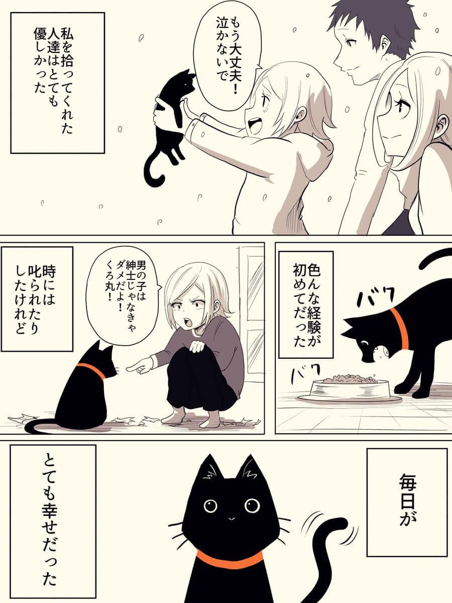 捨て猫が人間から愛情をもらう話01