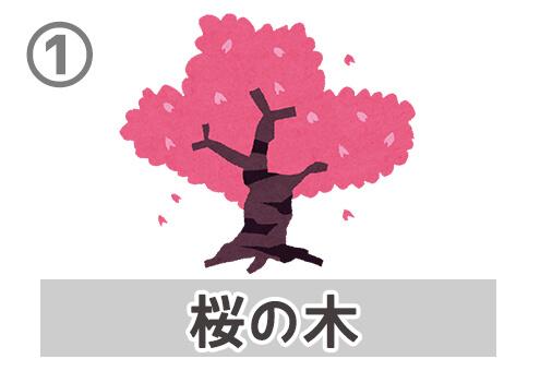 卒業 卒業式 性格 心理テスト 桜の木