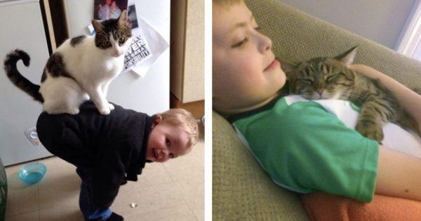 猫は親分、子どもは子分 13選
