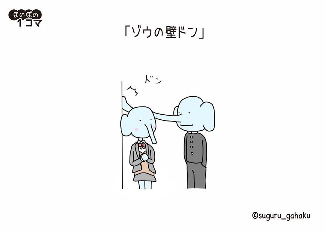 suguru_gahaku_84611129_205611590583335_8612362461060214128_n