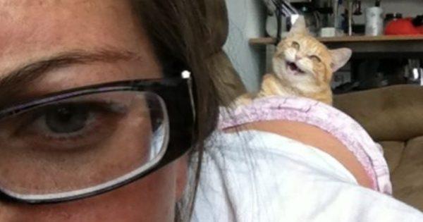 猫は「写りたがり」 12選