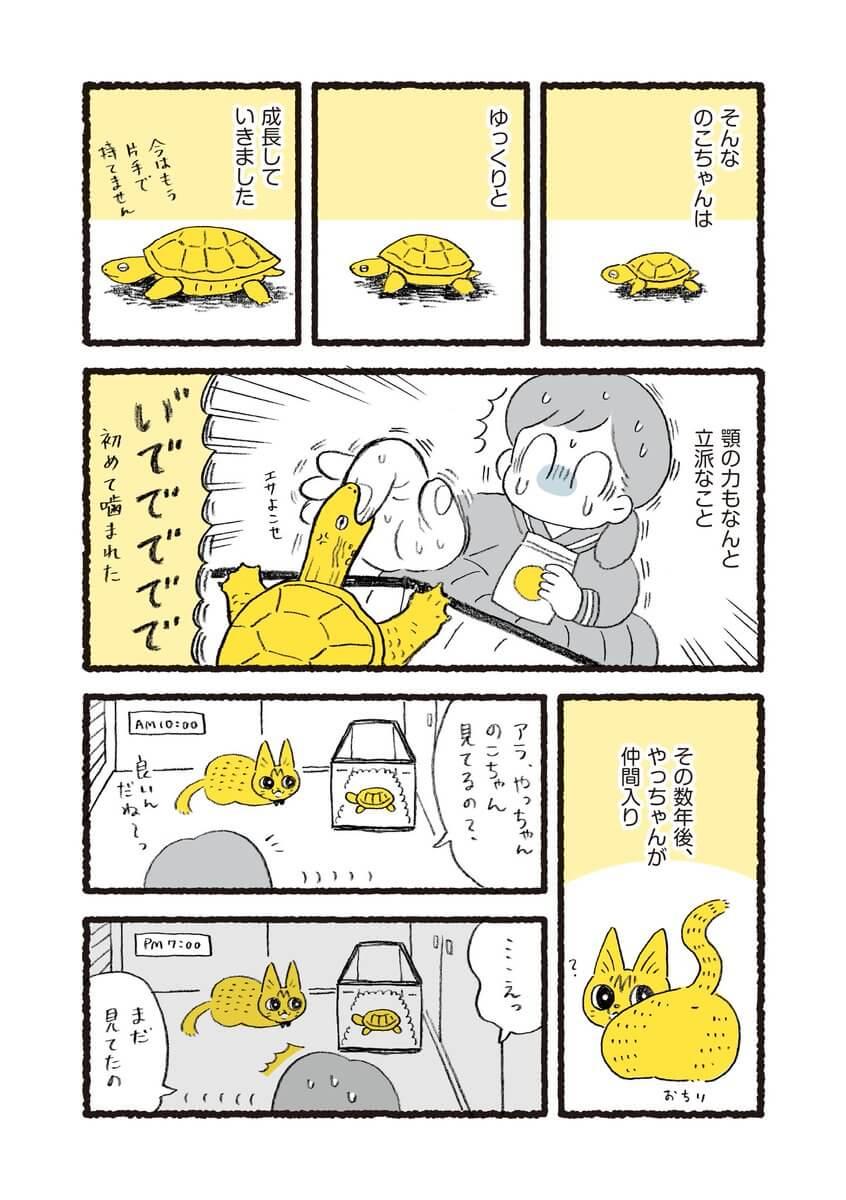 やっちゃんとのこちゃん02