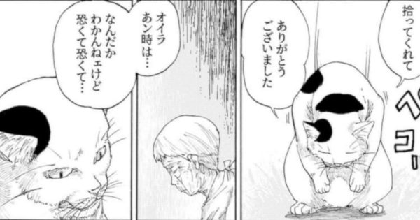 ねこ好きさんを100%「泣かす」漫画を見つけてしまった😭