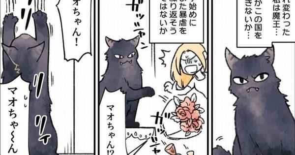 猫に転生した元魔王がめっちゃ可愛かった件。