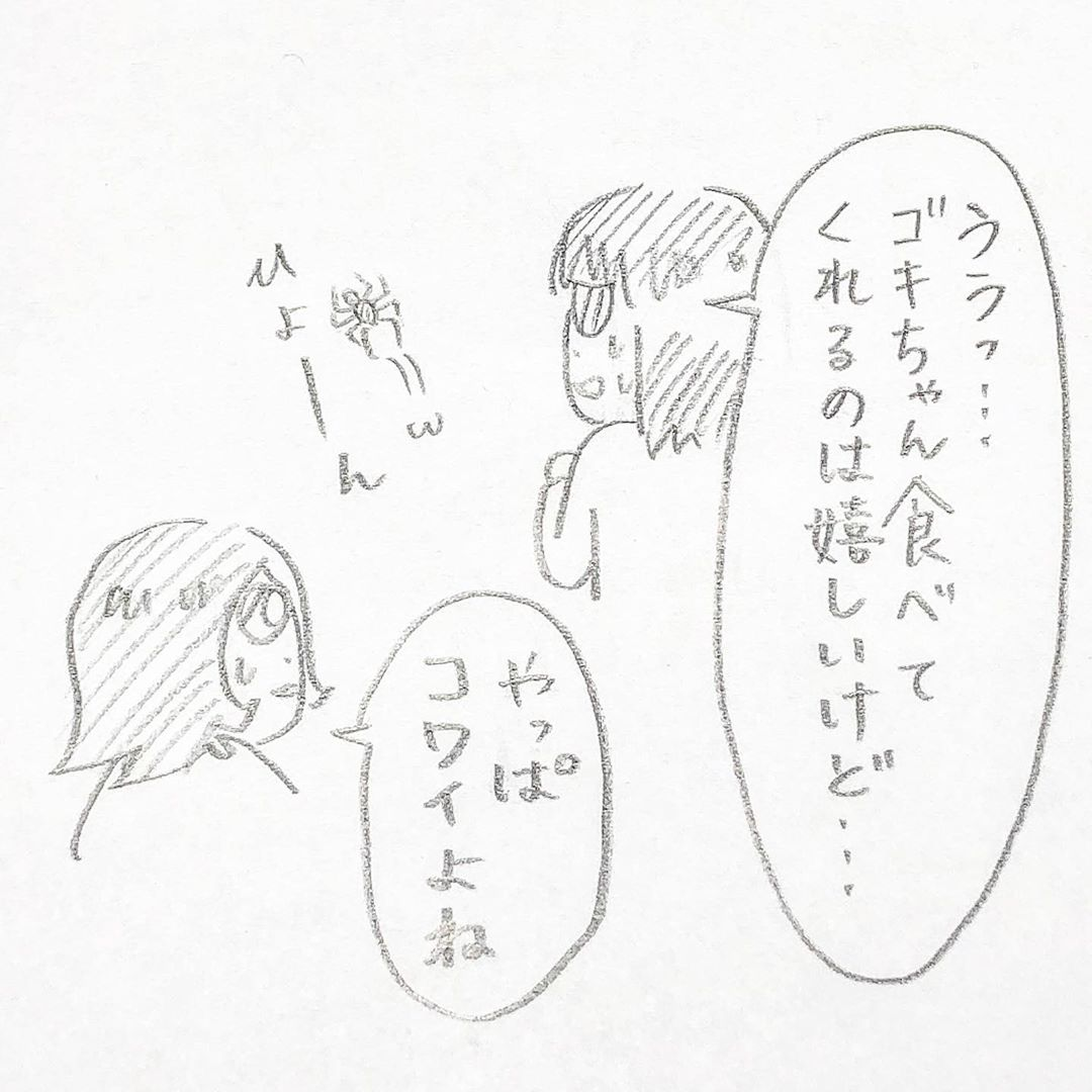 maniya.co.jp.plus_88148489_1237930246597407_4106402380775058977_n