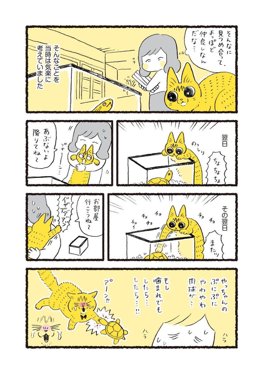 やっちゃんとのこちゃん03