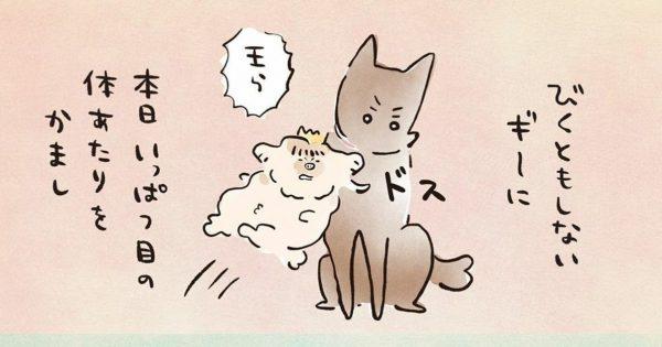 「イヌ飼いたくなる催眠術」みたいな漫画だあああ🐶
