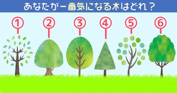 【心理テスト】一番気になる木から導き出す、あなたの性格