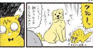 理不尽すぎる「猫のストレス発散法」に飼い主も絶句。