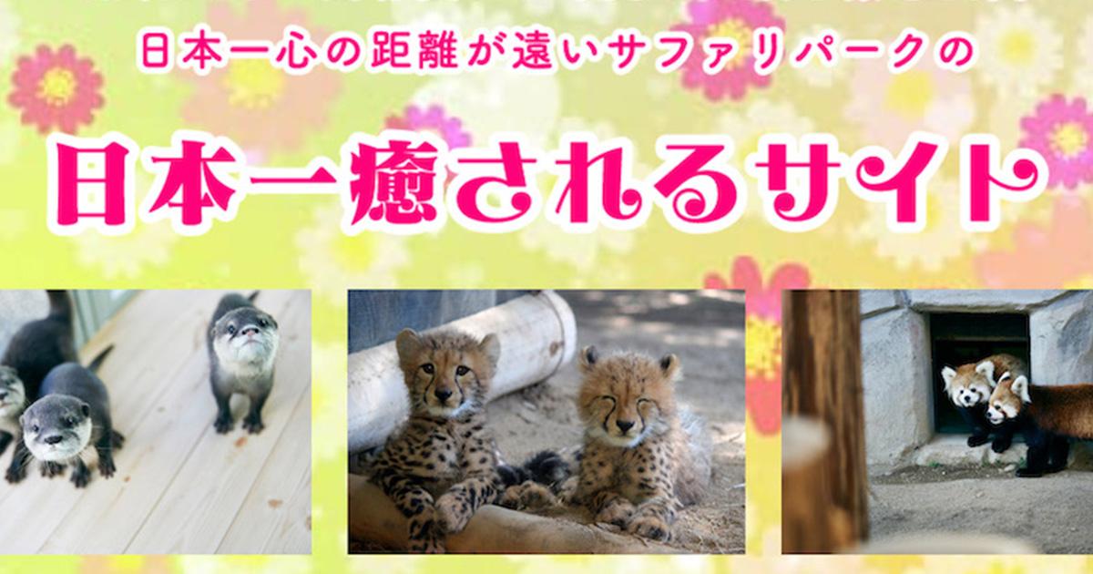 【コロナで休園中】日本一心の距離が遠い動物園のサイトが動物愛ダダ漏れな件