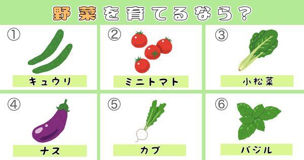 【心理テスト】育てたい野菜でわかる、「あなたの心に不足してるもの」