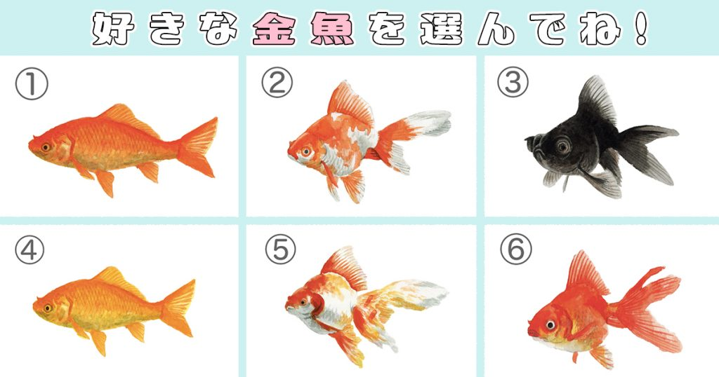 【心理テスト】惹かれる金魚で、あなたが「目立ちたがり屋」かどうか診断!