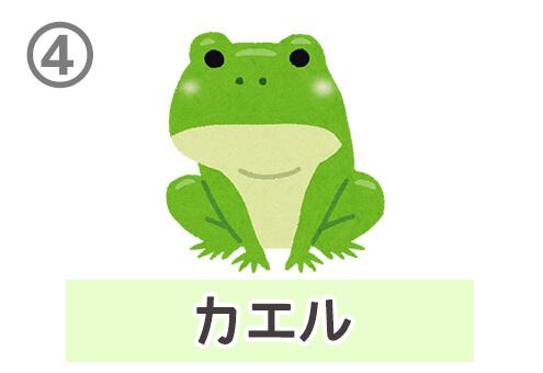 緑 性格 心理テスト 診断 カエル