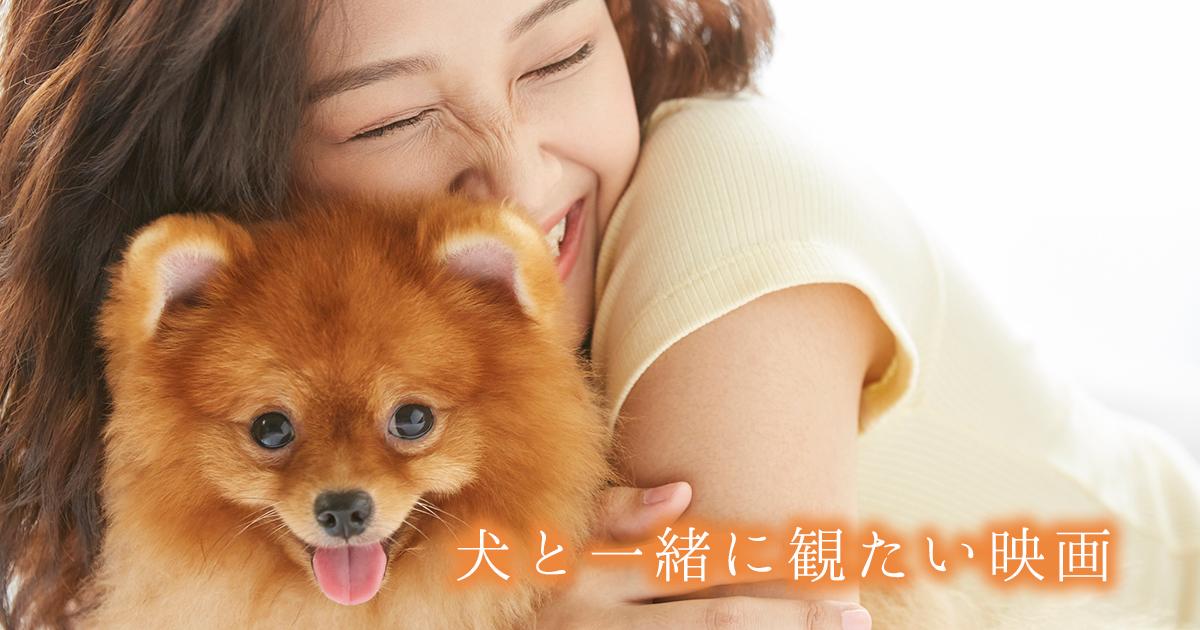 【笑える映画も!泣ける映画も!】犬好きなら絶対観たい名作おすすめ犬映画 10選