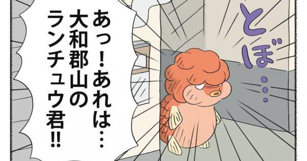 奈良県民しか分からない!?マニアックなギャグ漫画がクセになるww