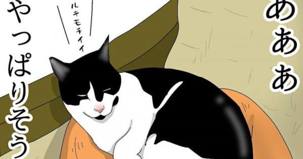 ネコの「理不尽な生態」を詰め込んだような漫画、最高かよ。