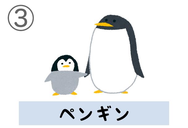 3penguin