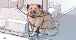 目を離したスキに「絶体絶命」になってた犬の表情、見て。