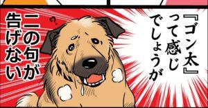 全ての雑種犬飼いに捧ぐ…「ダサかわワンコの日常」にめっちゃ和んだww