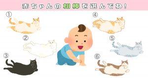 【心理テスト】猫を選ぶと、あなたの性格「甘え上手レベル」がわかります