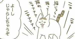 ネコ様には敵わん…「遊んで~!」からの裏切りが酷すぎww