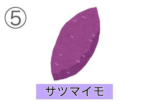 sentakushi5