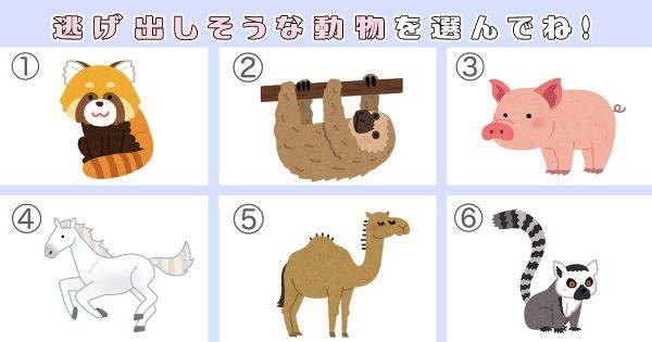 【心理テスト】この中で一番脱走しそうな動物は…?アニマル性格診断