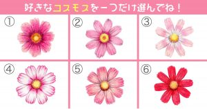 【心理テスト】好きなコスモスの花で、あなたの「性格」がわかります