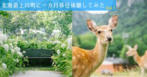 都会から上川町へ。最高の一枚を狙って大自然を巡ってみた!