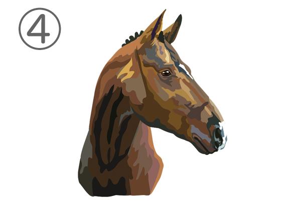 4horse