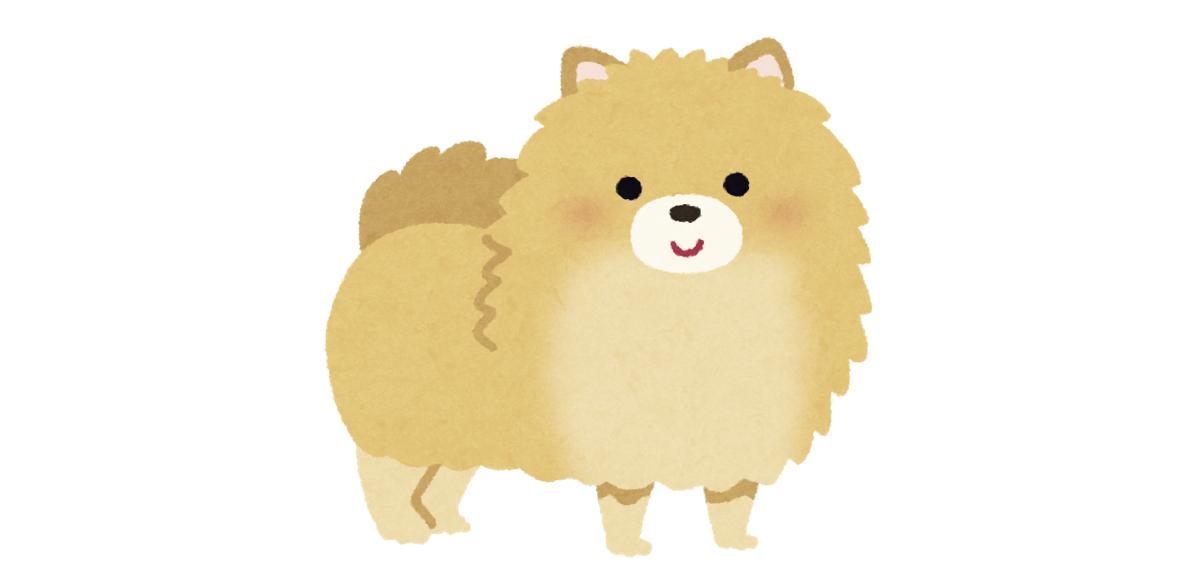 お祭り 屋台 食べ物 犬に例える 性格 ポメラニアン