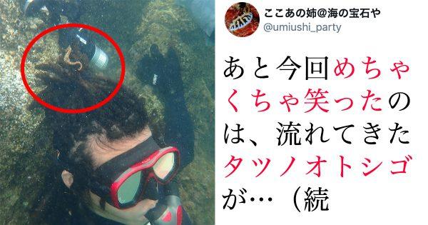 【奇跡の光景】ドレッドヘアにすると海の生物よってくるからやってみて!w