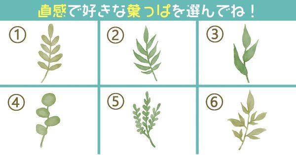 葉っぱ 性格 サバサバ 心理テスト