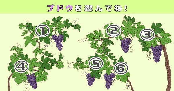 【心理テスト】食べたいブドウを選ぶと、あなたの「色っぽさ」が暴かれます