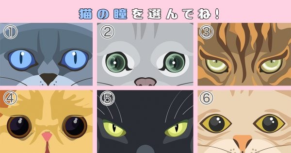 【心理テスト】猫の瞳に、あなたが「凝り性レベル」が映ります